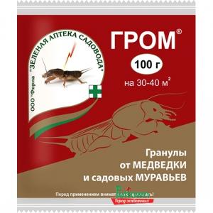 ГРОМ (100Г) ЗА
